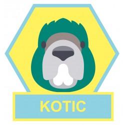 Kotic